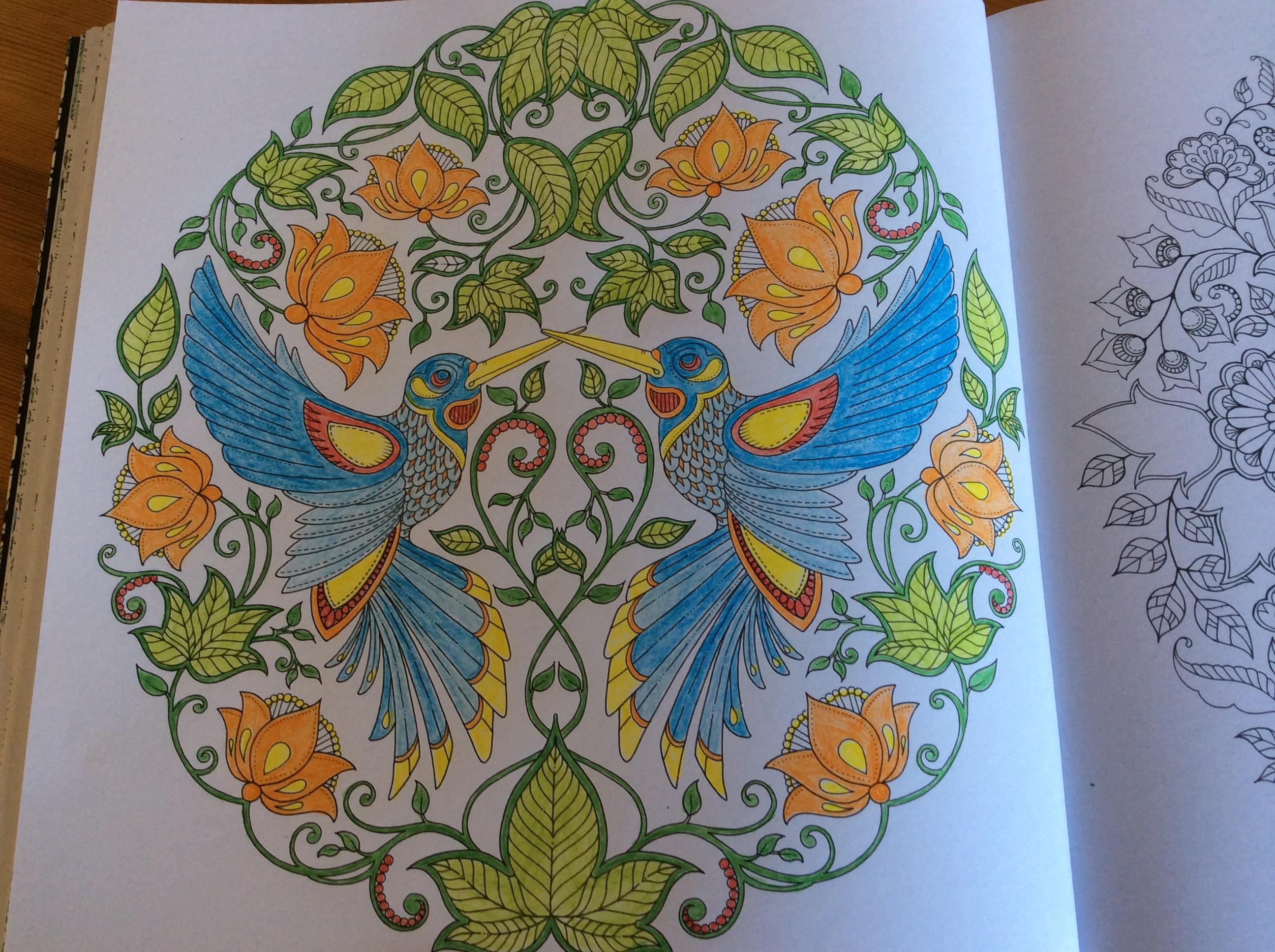 Livre De Coloriage Jardin Secret 30000 Collections De