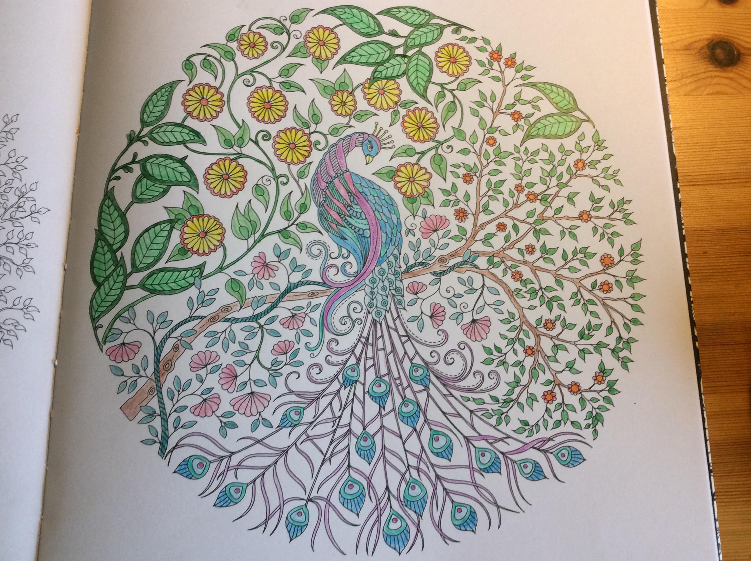 Coloriages et petites cr ations paon dans les feuillages for Jardin secret des hansen