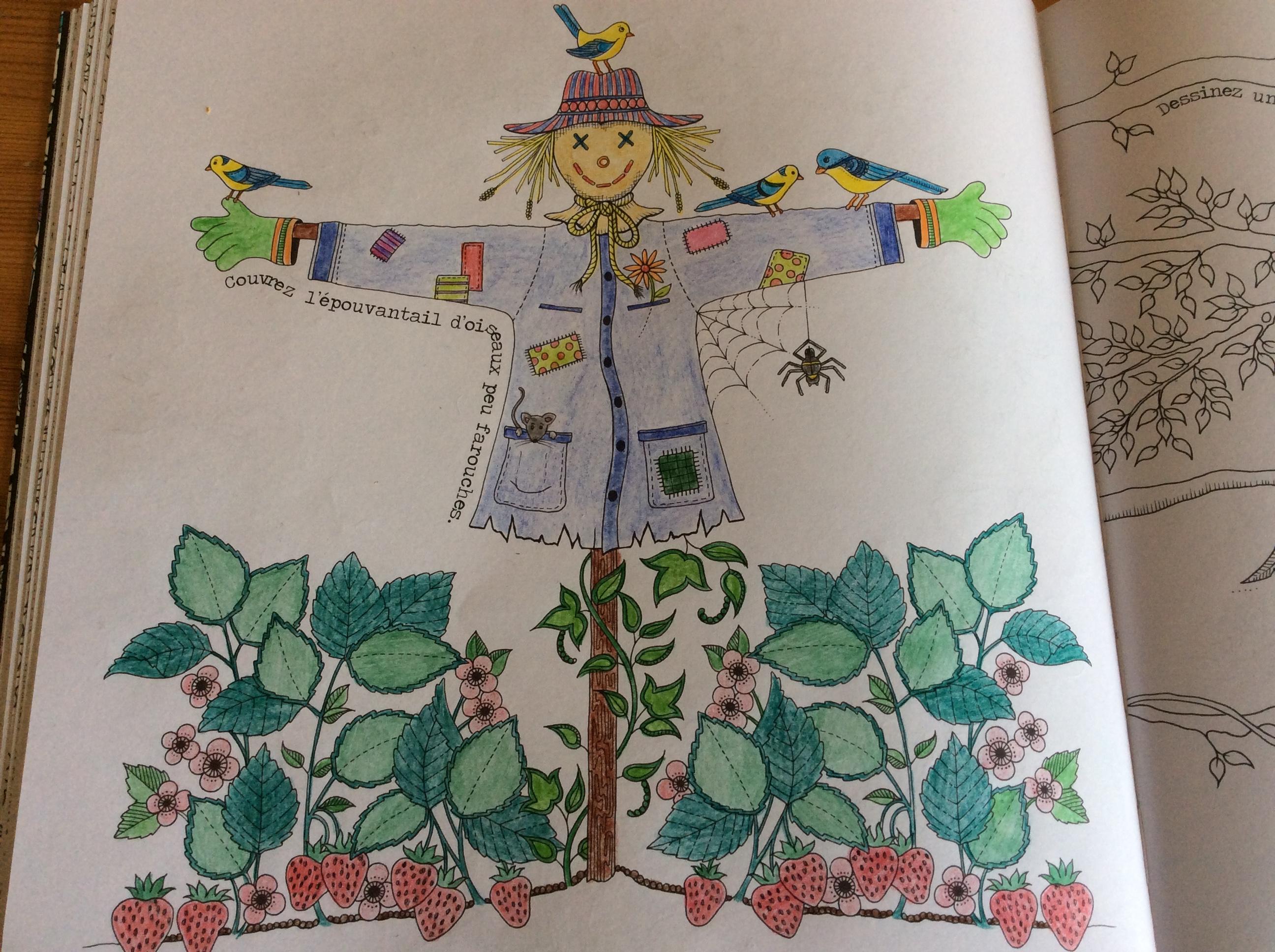 Coloriages et petites cr ations jardin secret for Jardin secret des hansen