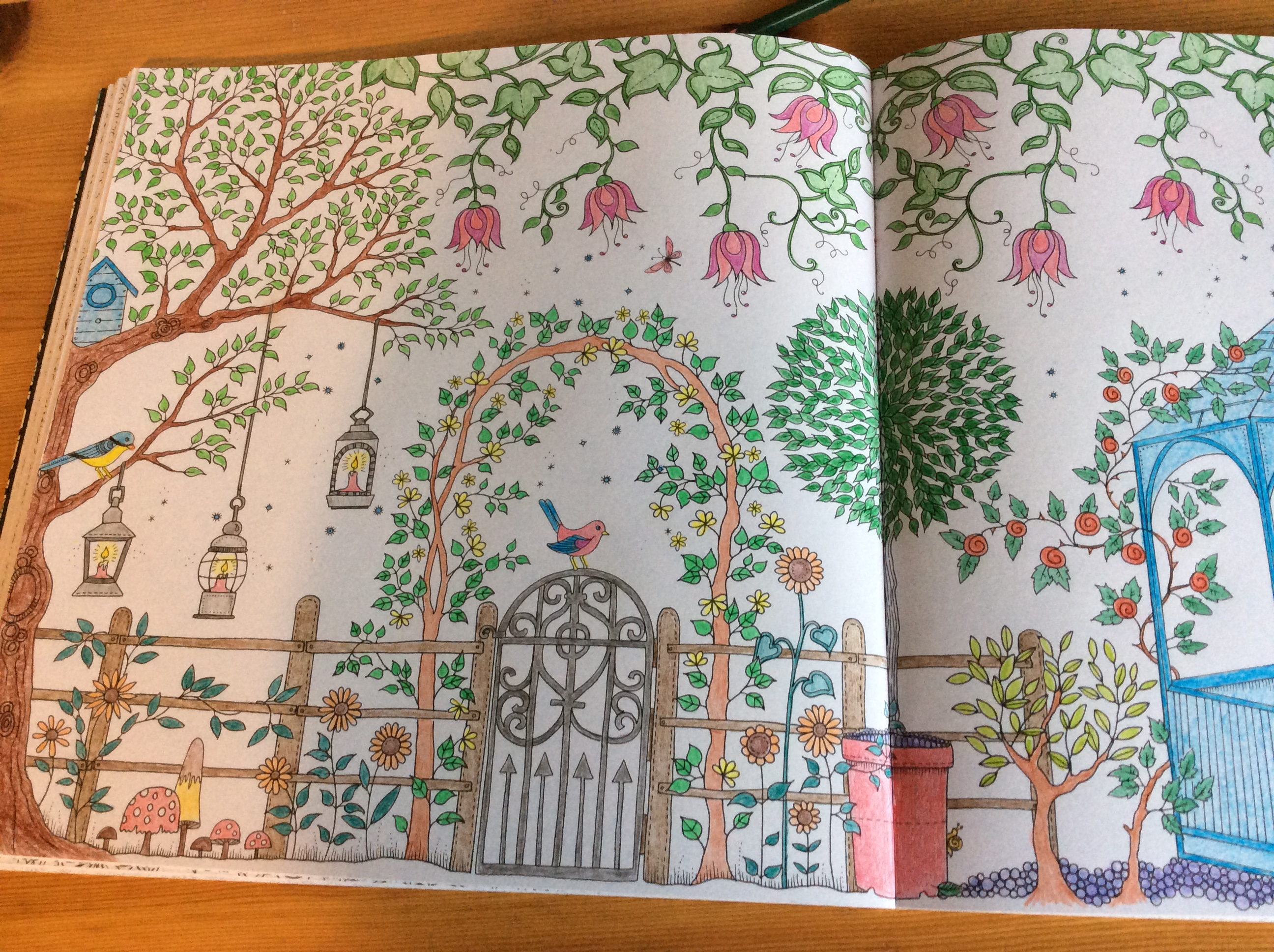 Coloriages et petites cr ations jardin secret for Akeo jardin secret 2015